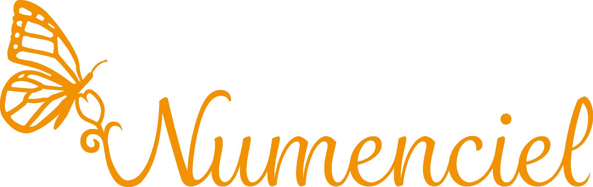 LOGO Numenciel orange