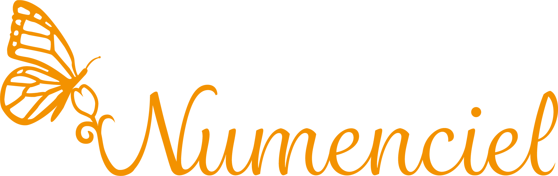 LOGO Numenciel orange